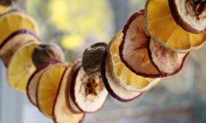 لیست قیمت میوه خشک شده 98